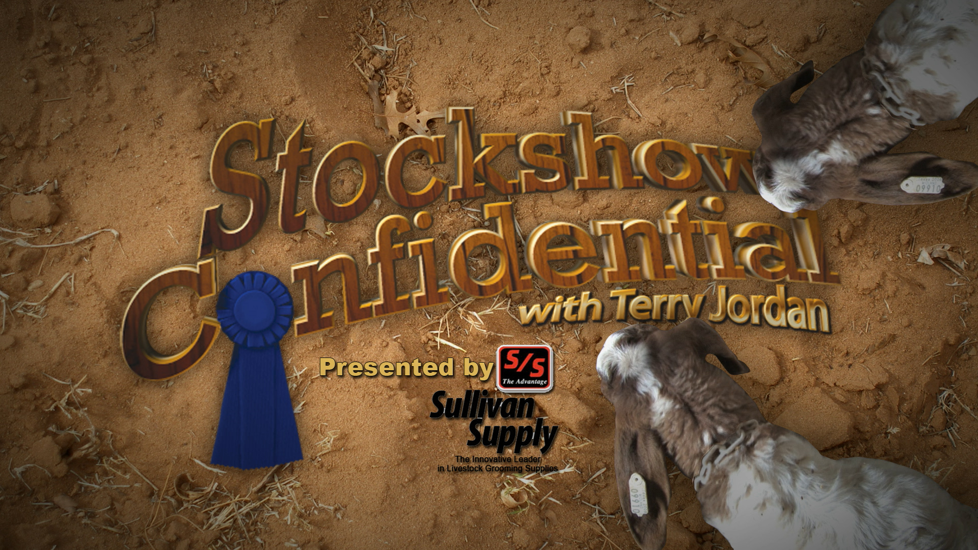Stockshow Confidential TV Show Opener